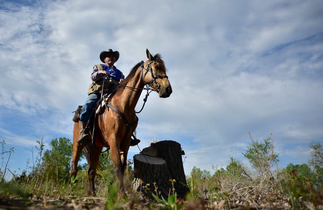 In this file photo, William Hinkebein completes an obstacle during the North American Trail Ride Conference Competitive Trail Ride in 2016 at Sand Hills State Park in Hutchinson.