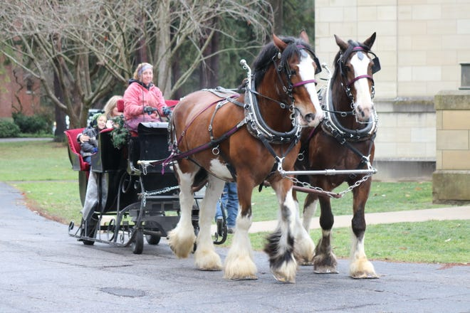 A local winter season staple in Fremont, the Rutherford B. Hayes Presidential Library and Museums hosted its traditional sleigh rides on Saturday, but kept groups to single households as a safety precaution due to COVID-19.