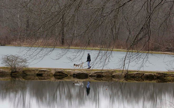 Many hikers have enjoyed the walk around Little Turtle Pond through the years at Firestone Metro Park such as this hiker Monday in Akron. The Summit Metro Parks is celebrating its 100th anniversary this year.
