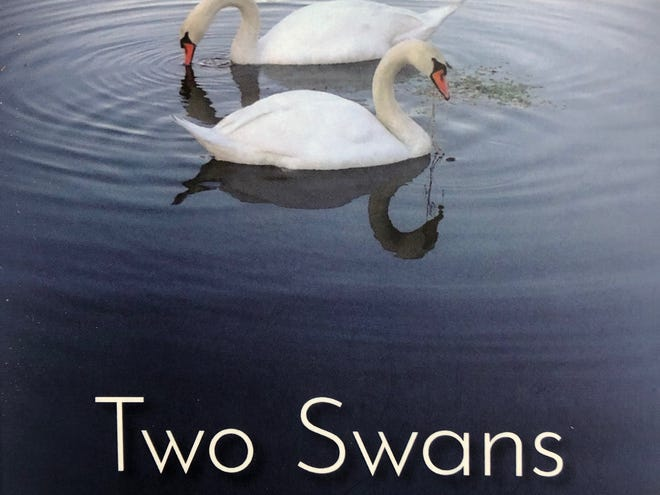 """""""Two Swans,"""" by Judith Fitzpatrick"""