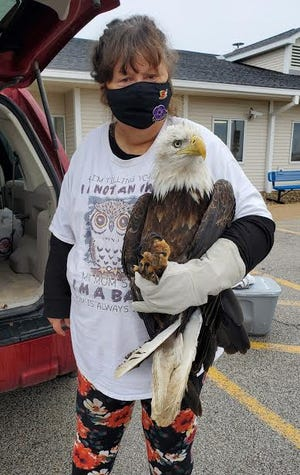 Tamara Hanley, Fractured Feathers Wildlife Rehab, is pictured with Joe the Bald Eagle.