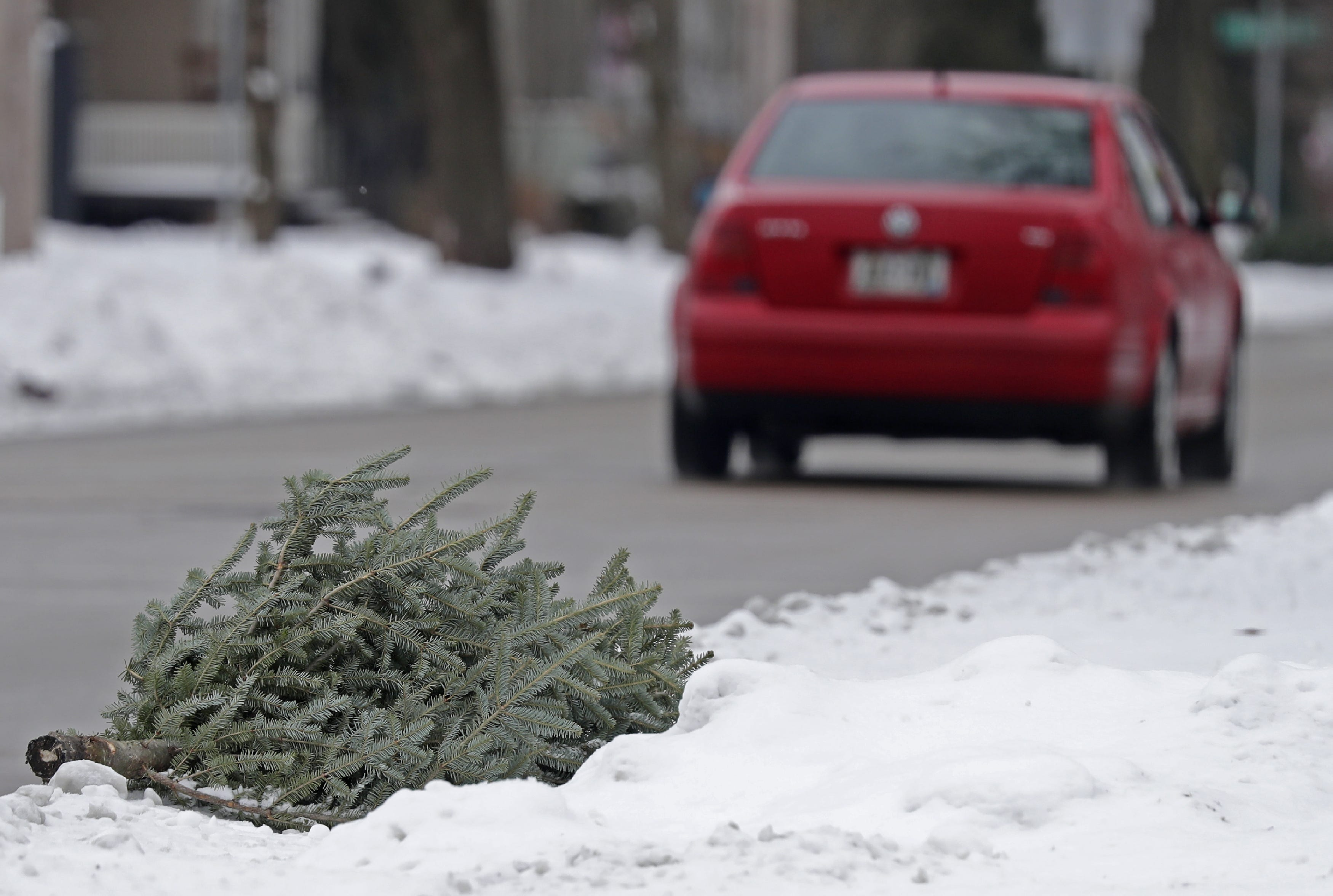 Kaukauna Garbage Pickup Christmas 2021 Christmas Trees Curbside Collection Of Discarded Trees Starts Monday