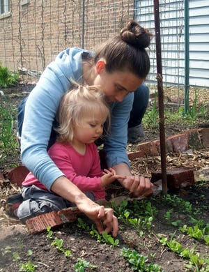 Morgan Elmore will present 'Native Plantscape: A Community Collective,' an introduction to the beauty and benefits of native plants, at 7 p.m. Jan. 29. The Zoom program is hosted by Arts at the Palace in Hamilton.