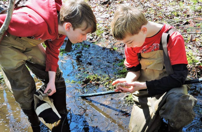 Nick Harris, left, and Parker Gibbons, right, inspect a handful of frog eggs. Small wetlands offer children myriad opportunities for environmental adventures. [Photo by Whit Gibbons]