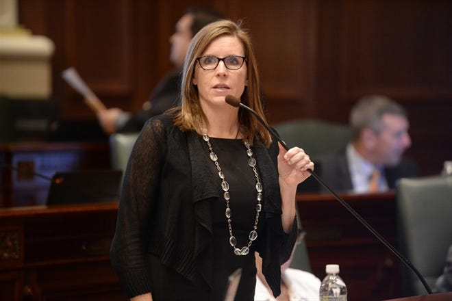 Rep. Ann Williams is pictured on the House floor.