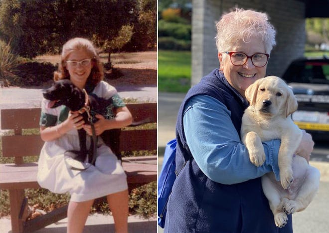 In the photo on the left, a 10-year-old Marybeth Hearn holds her first guide dog in training, Letta, in August 1962. Over 50 years later, in the photo on the right, Hearn holds her 55th puppy raised for Guide Dogs for the Blind, in Lemoore, Calif. For over five decades, the newly retired high school teacher has volunteered as a puppy raiser for the nonprofit, training 56 dogs on her own and 170 with her students in a local program she started. (Marybeth Hearn via AP)