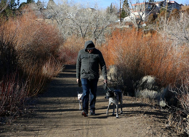 Anthony Piziali walks his dogs Bandit and Gracie on the trail that follows the Steamboat Ditch and trail near Markridge Dr. in Reno on Jan. 7, 2021.