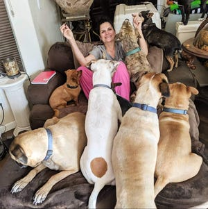 US Army veterans Nichole Imlay enjoys a playful moment with some of her foster dogs. She and business partner Georgine Murphy co-own That Place Called Home dog rescue.