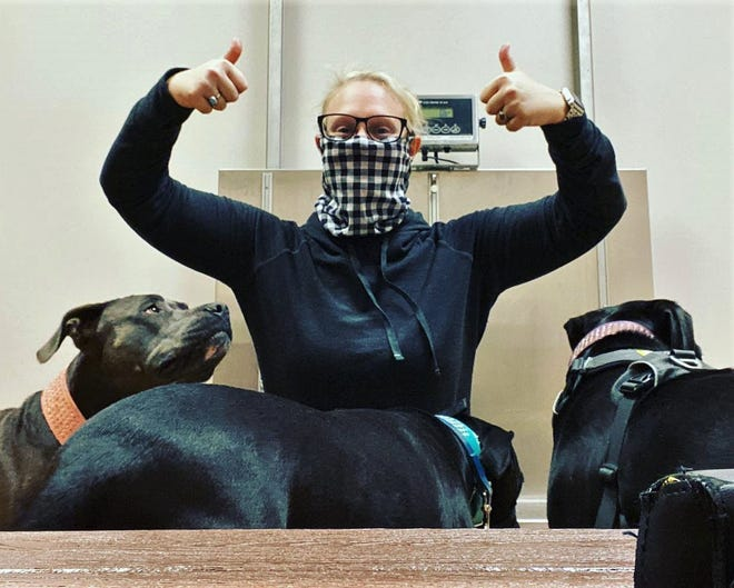 Meredith Anderson takes her adopted dogs to the vet for their check-ups.