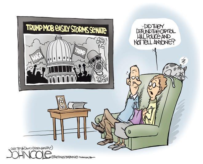 Today's editorial cartoon (Jan. 10, 2021)