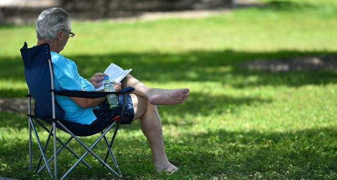 City of Sarasota commissioners want to bring free Wi-Fi to public parks in the area, such as Payne Park.