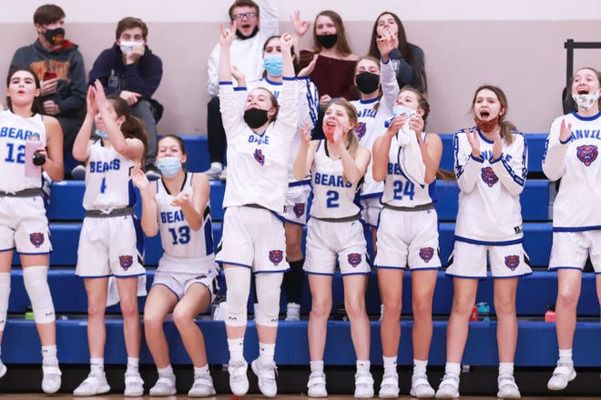 Danville's players erupt from the bench following a 3-point basket by the Bears Friday against Van Buren County.