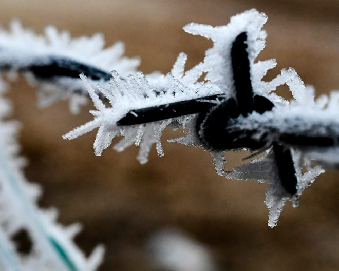 Freezing fog combined with a little wind overnight create hoar's frost forms on stationary objects, such as this barbed wire fence, Saturday morning in Garden City.