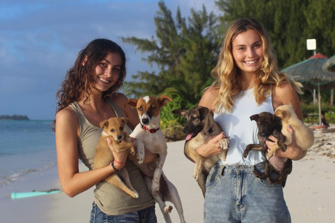 Pueblo sisters Aria, (left), and Grace, (right), Keilbach play with some of their foster puppies on a beach in Saipan.