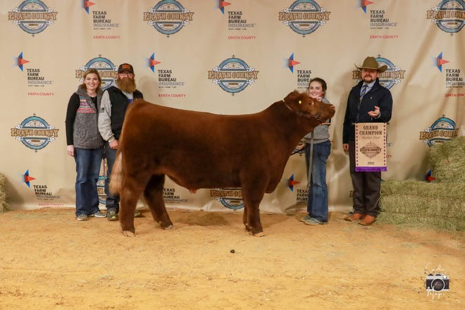 Exhibitor Kennedy Powe shows her Grand Champion Steer on Friday at the Erath County Junior Livestock Auction show. For additional photos visit the Erath County Livestock Facebook page or Caitlin Moyer Photography.
