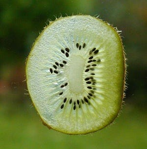 Kiwifruit possess numerous vitamins and minerals, most notably vitamins C and E as well as potassium and folate.