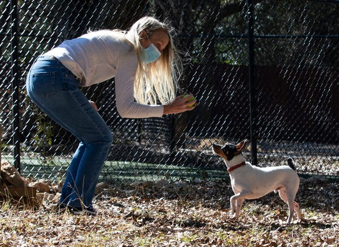 Michelle Stewart plays fetch with her toy fox terrier, Moby, at the Dog Alliance in Cedar Park on Wednesday. Stewart's late husband, Michael, was training Moby to be his service dog before Michael died of coronavirus complications in November. An outdoor training classroom is dedicated in Michael's memory.