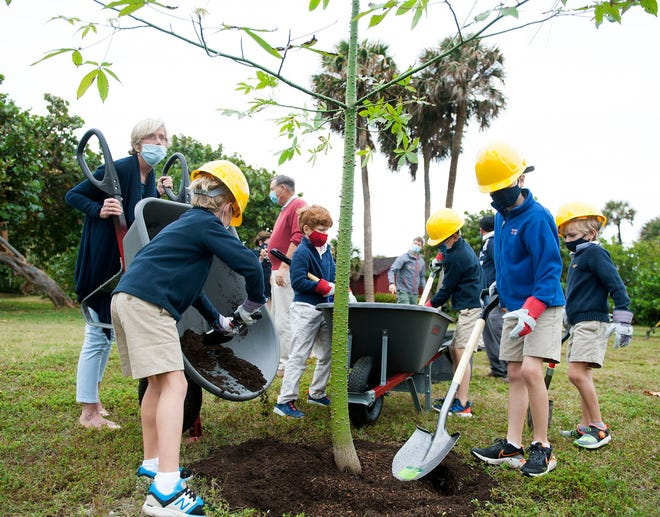Students from area schools helped plant a kapok tree Thursday in celebration of Arbor Day at Phipps Ocean Park.
