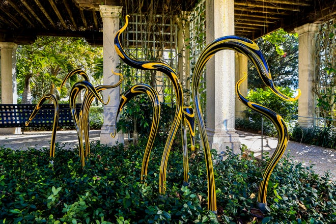 """Black and Yellow Herons"" by Dale Chihuly is on exhibit in the Philip Hulitar Sculpture Garden at The Society of the Four Arts through April 30."