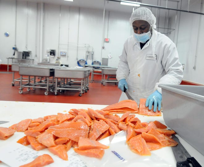 Kevin Walker slices salmon at the Acme Smoked Fish Corp. processing plant in Pender County.