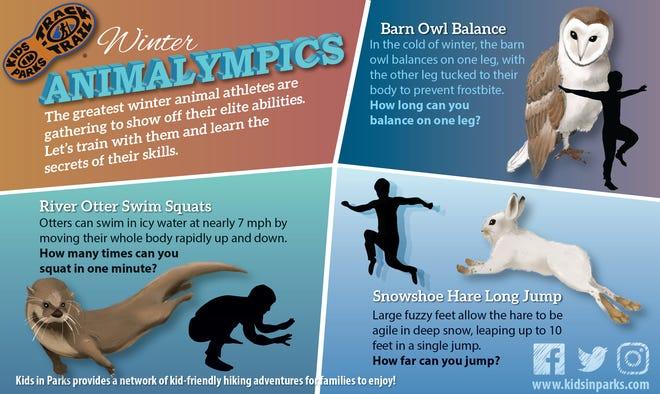Winter Animalympics TRACKtivity