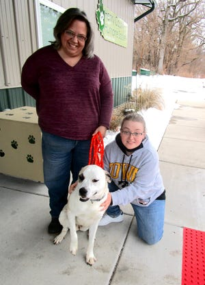 """Tracy Diehl, left, manager of the Henry County Humane Society - Geneseo Shelter; and Kathleen Dichiser, volunteer and board member of the Humane Society, are shown with """"Heidi,"""" one of the dogs from an animal shelter in Oklahoma that will be ready for adoption in the near future at the Geneseo Shelter."""