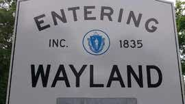 Wayland Cultural Council to host arts discussion