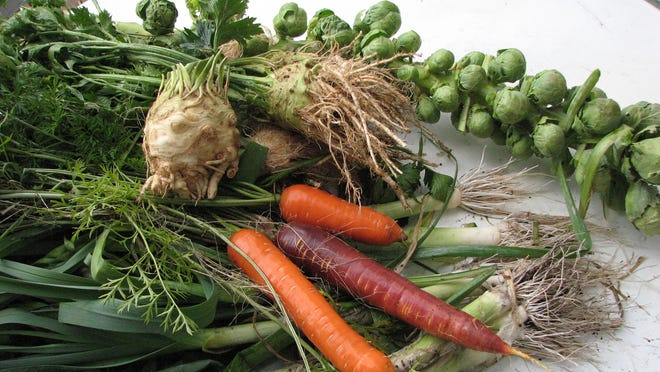 Organic vegetables from Henry's garden not only look good but they taste great, too.