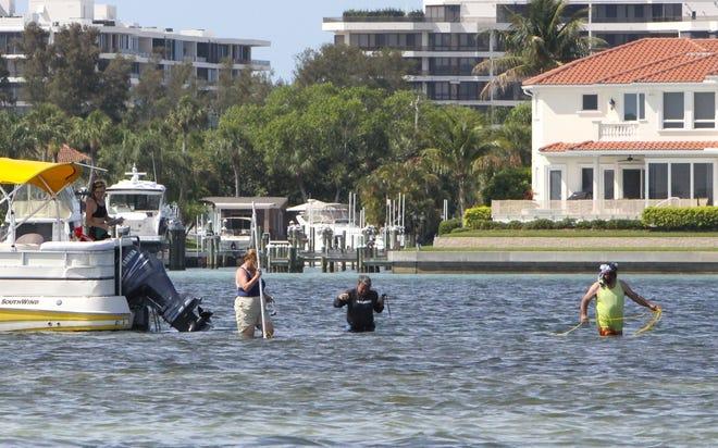 The Sarasota Bay Estuary Program is offering its Sarasota Bay Partners Grants for 2021.
