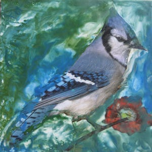"""Blue Jay"" by Claire Keery"