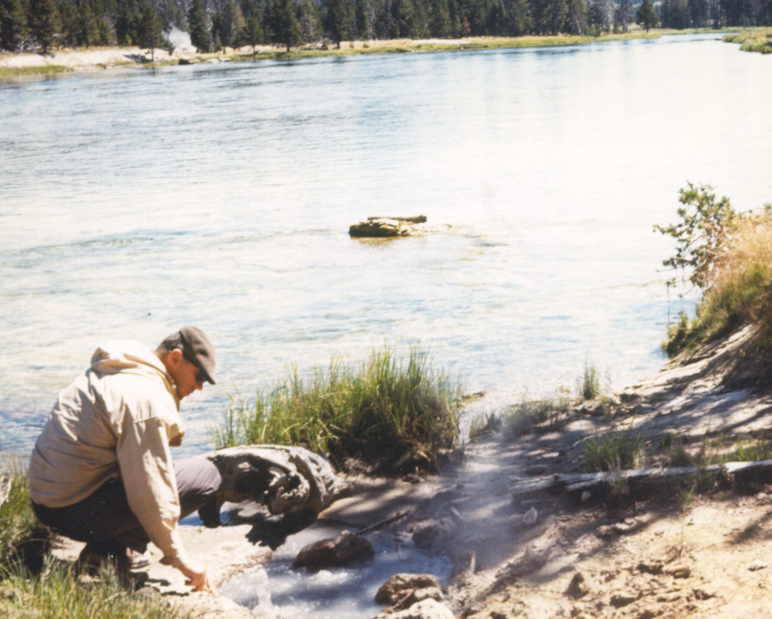 How a 1960s discovery in Yellowstone made millions of COVID-19 PCR tests possible