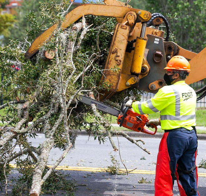 Getting trees or tree branches removed in February can be a really good way to kick off your home improvement projects.