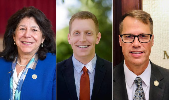 Mayors Donna Holaday of Newburyport, Alex Morse of Holyoke, and David Narkewicz of Northampton are among the city leaders planning to move on from their roles.