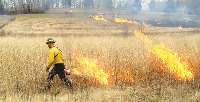 The U.S. Department of Energy is initiating a series of controlled burns.