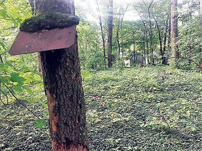 SThe original World War II  U.S. Army sign marking the Peak Cemetery in Oak Ridge.