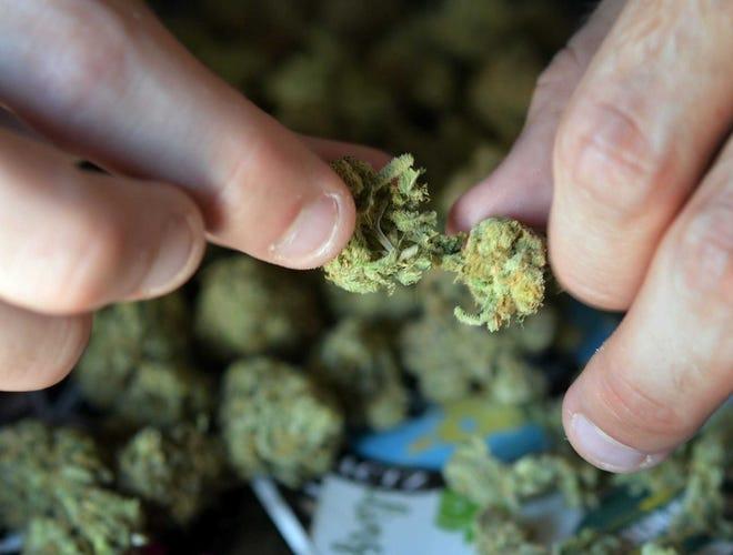 A man prepares marijuana for smoking in Worcester.