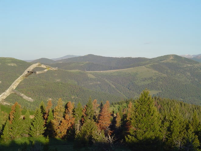 Cadotte Pass in Montana looking west from Sunset Mountain (Photo by