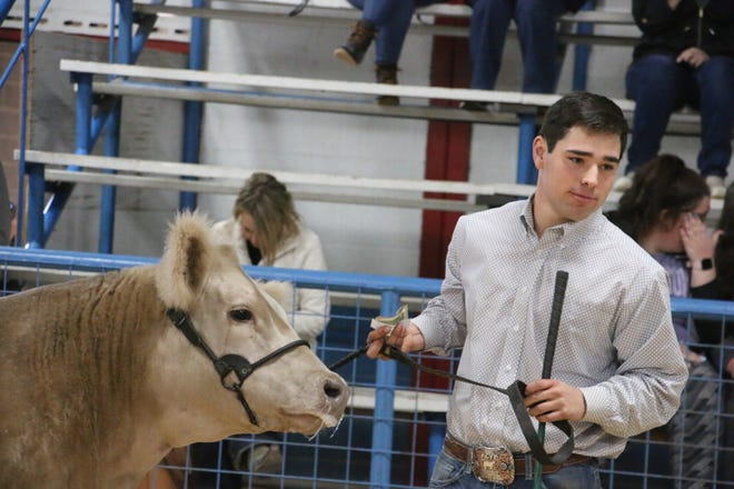 Ethan Sanchez walks with his prize-winning steer at the Brown Count Youth Fair.