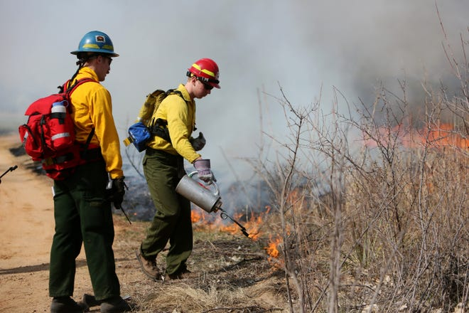 HCC Fire Science student Stephen Elder uses a drip torch to ignite grass and brush during a prescribed burn at Prairie Dunes Country Club in this March 23, 2015, file photo. The Hutchinson Fire Department and Kansas Forestry Service are planning a series of controlled burns north and east of Hutchinson over the next three weeks using similar practices to mitigate wildfire danger.