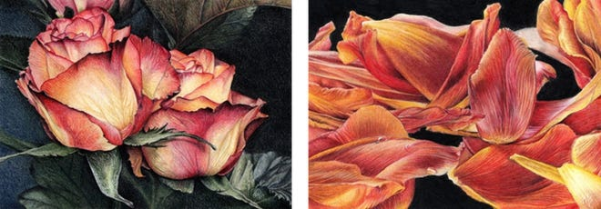 """Loves Me"" and ""Loves Me Not,"" paired colored pencil drawings by Katie Mae Pollard"