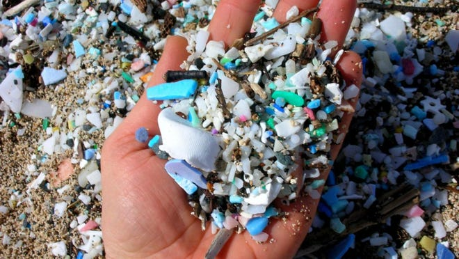 Pieces of microplastics are common on Great Lakes' coastal dunes shorelines.