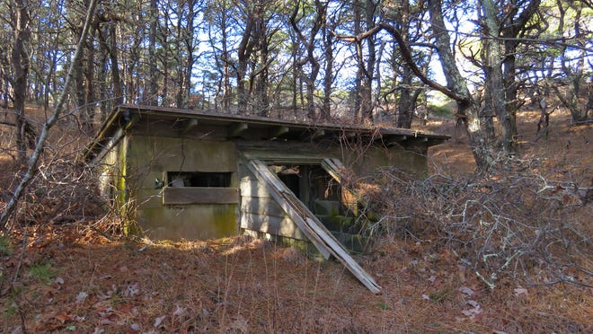 The ruins of an old hunting camp off the Great Island trail in Wellfleet.