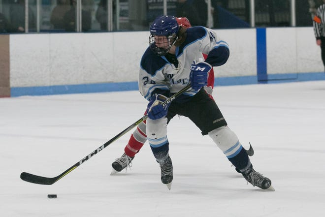 Doherty High senior David Brissette acknowledge that hockey is his favorite of the three sports he plays in the Worcester public schools.