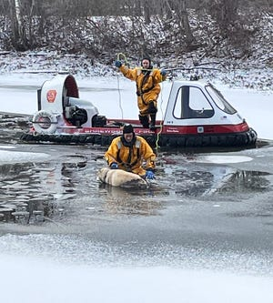 Firefighters rescued a dog from icy Flint Pond in Shewsbury Friday morning.