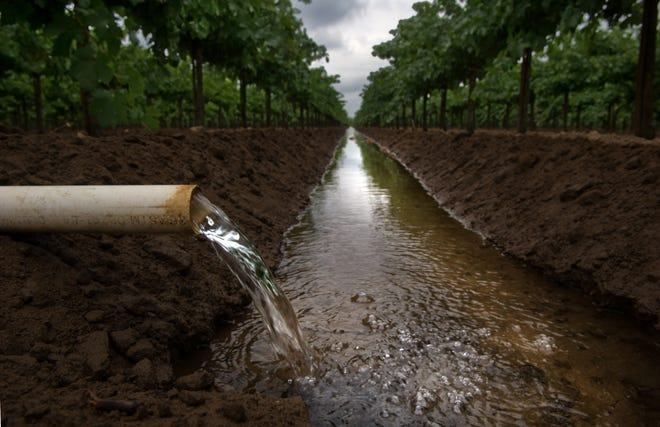 Water pours from a pipe to irrigate a row of grapes in a vineyard on Turner Road near DeVries Road in Lodi in 2013. New statewide wastewater processing rules could increase production costs for wineries and protections for waterways.