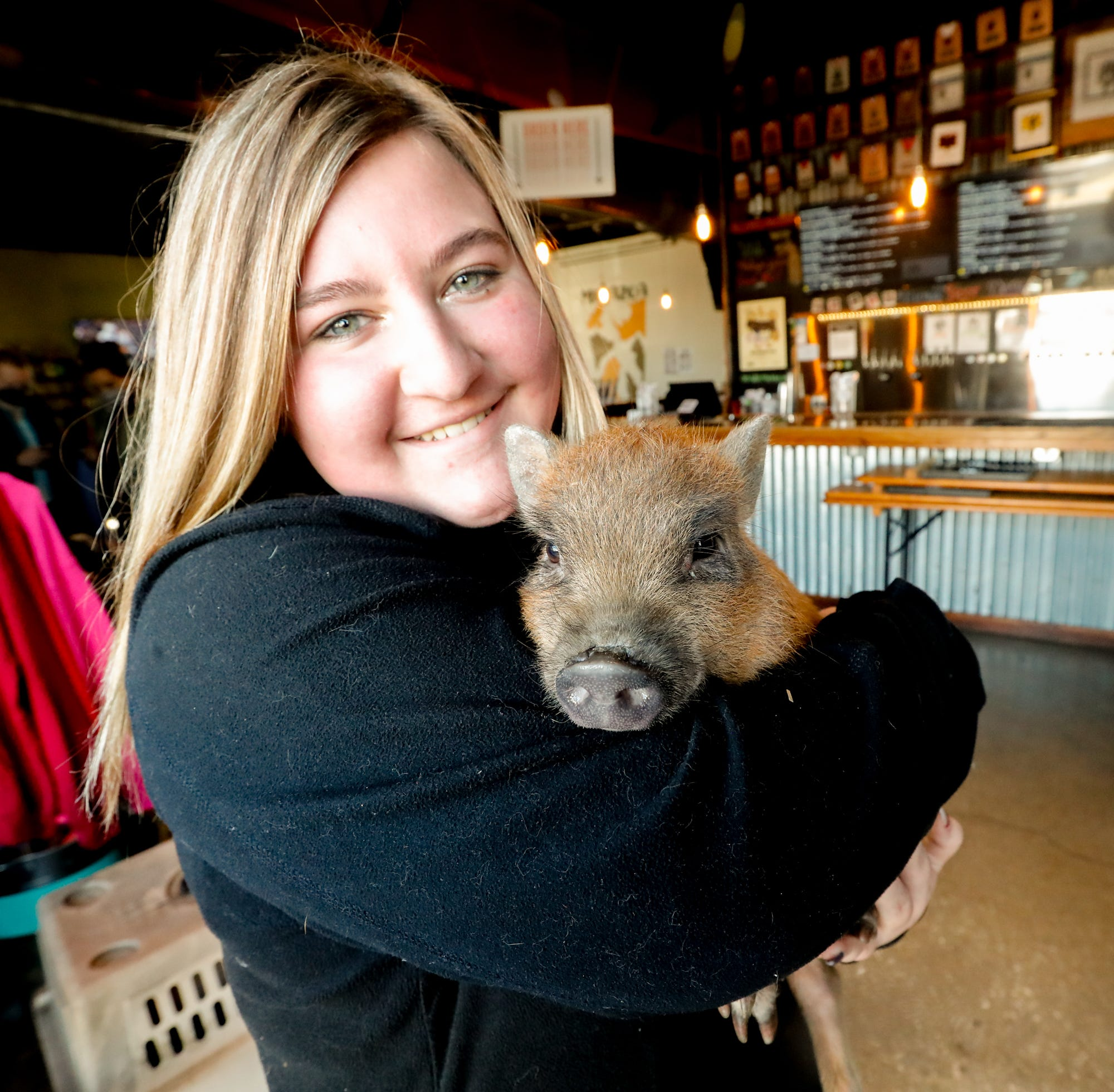 Adoptable 'Pig Yoga' at Metazoa Brewing Co. with Oinking Acres