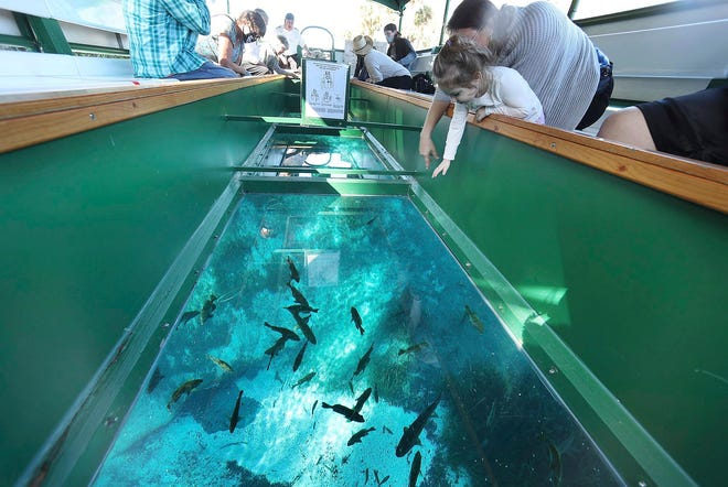 Visitors enjoy the view from a glass-bottom boat at Silver Springs, Fla, on Jan. 6, 2021.