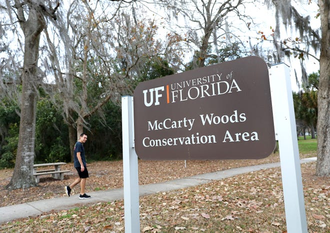 A student walks on the sidewalk past McCarty Woods Conservation Area on the University of Florida campus in Gainesville Fla., Jan. 25, 2021.