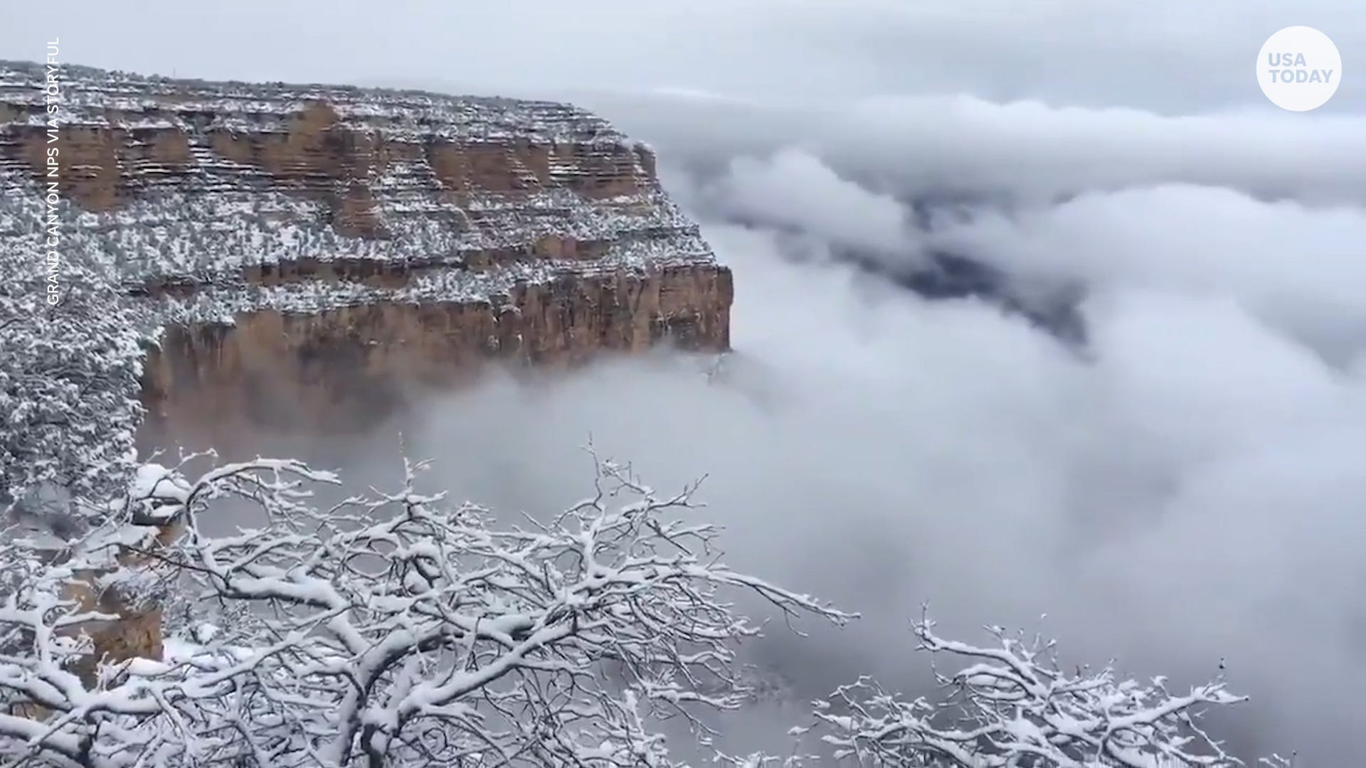 Have you ever seen the Grand Canyon hidden by low clouds?