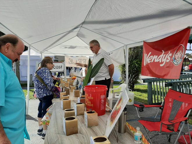 This photo shows activity at a previous Rainbow Springs Art Festival. This year's version is coming up in March.